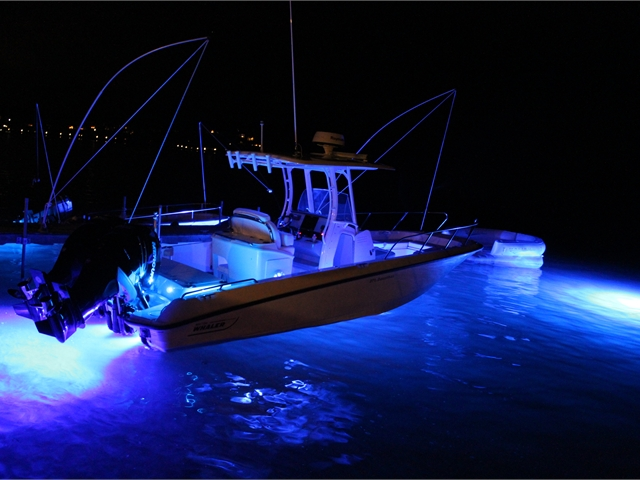 Piranha P6N matched with DL6D docklights